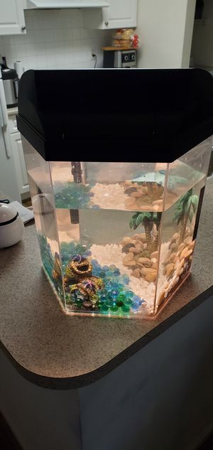 Fish tank. Pets. for Sale in Littleton, MA