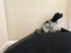 PET RAMP for Sale in Folsom, CA