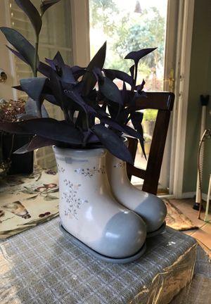 Purple pink queen in plant pot for Sale in McKinney, TX