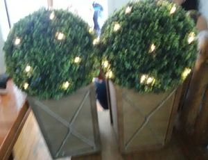 Topiary, garden decor, small tree for Sale in Los Angeles, CA