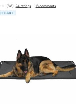 Elevated Dog Bed Xlarge for Sale in Fort Worth,  TX