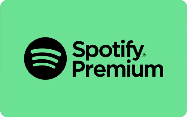 Spotify premium (can only add 4)