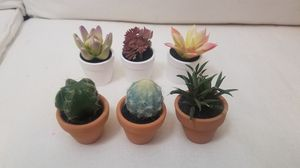 Mini Terracota Succulents for Sale in Dallas, TX