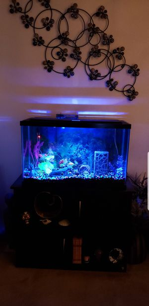 Fish tank items for Sale in Centennial, CO