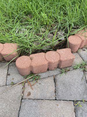 Landscape border cheap!!!! 25 cents/brick for Sale in New Port Richey, FL