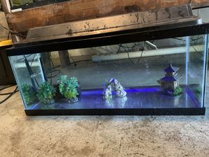20 gallon long fish tank aquarium with filter, top and working light for Sale in Orlando, FL