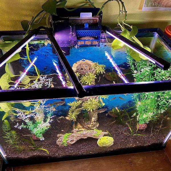 15 Gallon Fish Aquarium
