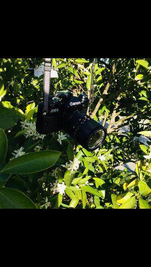 Vintage 35MM Film Camera Canon AE-1 Program for Sale in Alta Loma, CA
