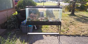 75 gallon fish tank for Sale in Hoquiam, WA