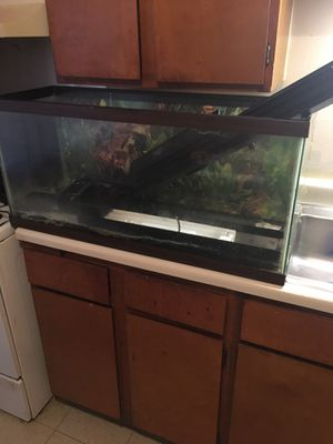 Fish tank with lightning for Sale in Cincinnati, OH