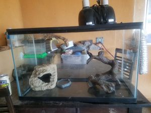 Bearded dragon enclosure cage tank snake lizard for Sale in Paramount, CA