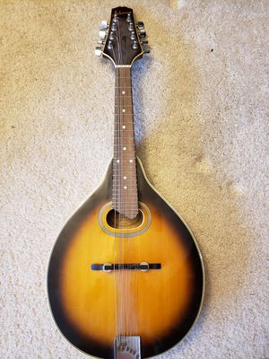 Starter Mandolin for Sale in Chicago, IL