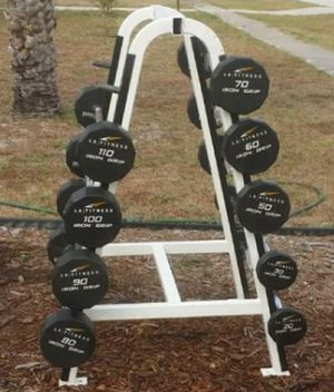 Iron grip urethane fixed curl bars 20 30 50 60 70 80 90 100 110 with 5ft cybex rack right around $6000 new with rack $3800 gets them Made In The USA for Sale in Deltona, FL