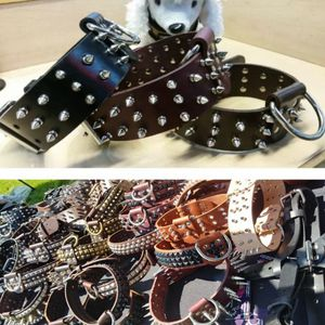 Collars for Sale in Montclair, CA