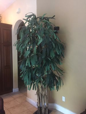 BEAUTIFUL ARTIFICIAL TREE THAT IS ALWAYS GREEN for Sale in Odessa, FL
