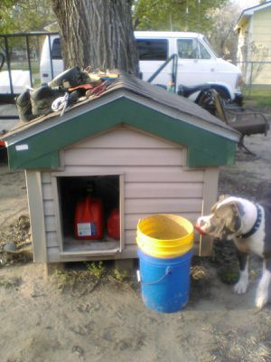 Nice New Dog House for Sale in Wichita, KS
