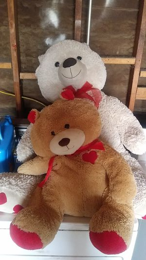 Two Bear Teddy bears Used for Sale in Hesperia, CA