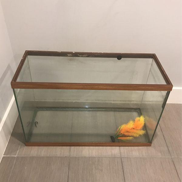 40gal Fish Tank That