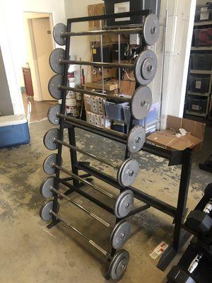 20-55 Lb Straight Bar Barbell Set with Custom Dual Sided Barbell/Dumbbell Rack for Sale in Davenport, FL