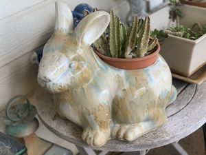 Bunny Pot with succulents for Sale in Kapolei, HI