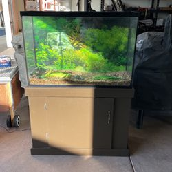 45 Gallon Aquarium for Sale in Clovis,  CA