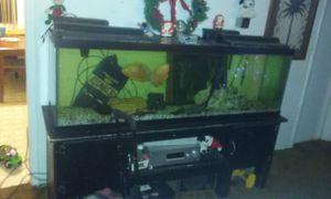 125 gallon fish tank for Sale in Charlotte, NC