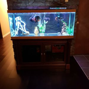 75 Gallon Fish Tank With All You Need To Run An Aquarium for Sale in Sykesville, MD
