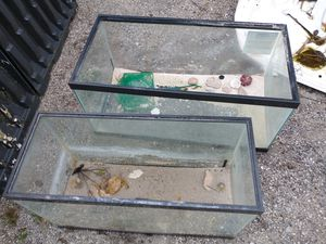 Fish tanks. Selling one or both for Sale in Okeechobee, FL