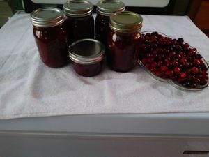 Home made Cranberry Sauce for Sale in St. Petersburg, FL