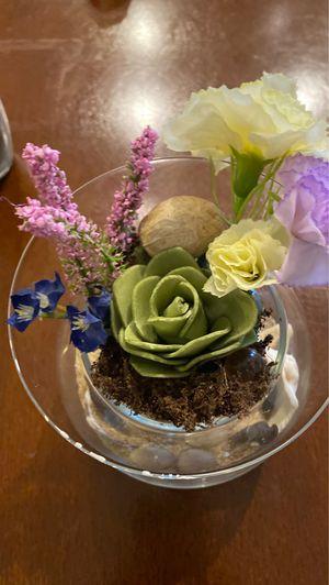 Decorative plants for Sale in Corona, CA