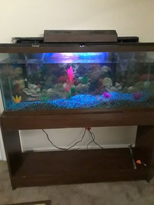 Fish Aquarium for Sale in Huntsville, AL