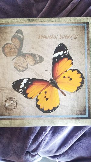 Butterfly home decor for Sale in Ontario, CA