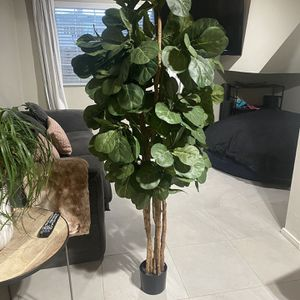Fiddle Fig 6' Foot Without Planter Great Fake Tree for Sale in Newport Beach, CA