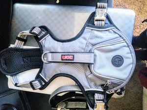 PetSmart exclusive Kong waist bag harness for Sale in Salt Lake City, UT