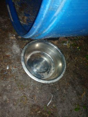 Dog bowl for Sale in Oakland Park, FL