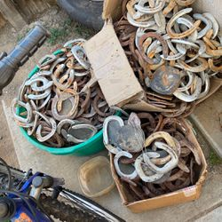 Horse Shoes for Sale in Bakersfield,  CA