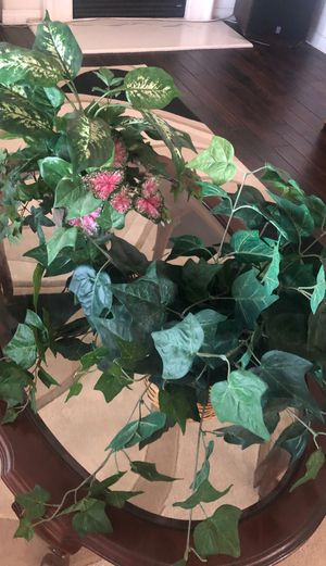 Set of two fake house plants for Sale in Rancho Cucamonga, CA
