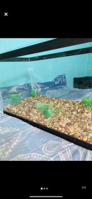 10 gallon tank for Sale in Brooklyn, NY