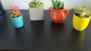 Succulent Plants Decor (Fake) for Sale in Queens, NY