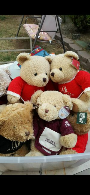 HELZBERG TEDDY BEARS*EXCELLENT CONDITION for Sale in Albuquerque, NM