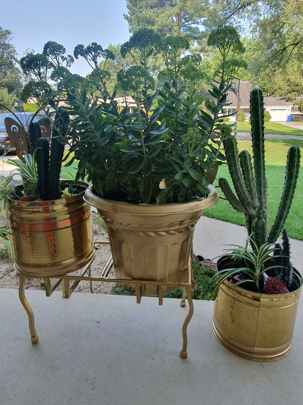 Complete golden yard set with butterflies,pot with artificial and real plants