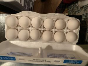 Farm fresh eggs for Sale in Manchester, PA
