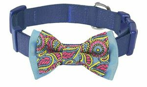 Blueberry Pet 20+ Patterns Bandanas or Bowtie Dog Collars Medium for Sale in La Habra Heights, CA