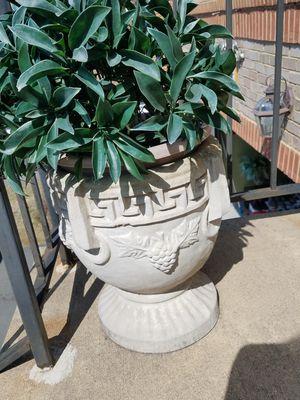 Ceramic vase for outside for Sale in Aldie, VA