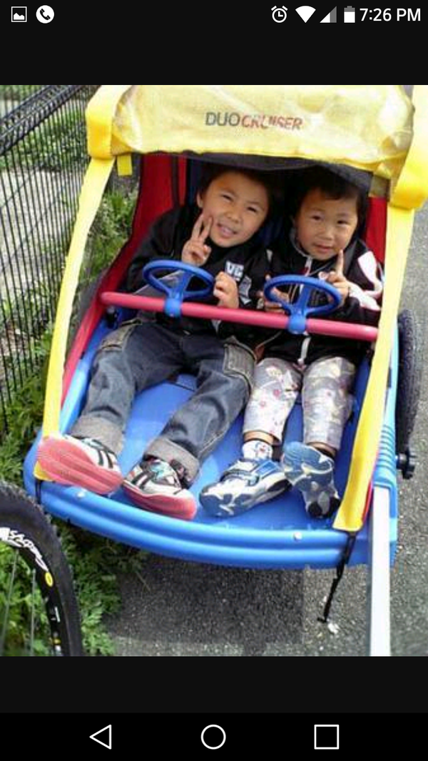 Instep Duo Cruiser Stroller 2 Seater Bike Trailer For Sale In