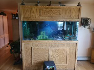 Fish Tank for Sale in Hudson, CO
