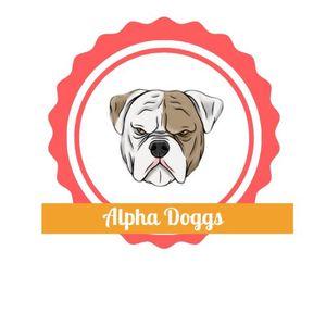 Dog Merchandise for Sale in Hesperia, CA