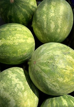 Watermelon for Sale in Perris, CA