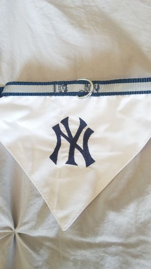 Ny Yankees Dog collar for Sale in Orlando, FL