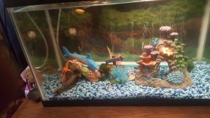 10 gal fish tank for Sale in Las Vegas, NV